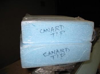 Chap 10 - Canard Tips