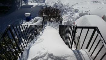 Snow greeting